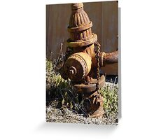 Firemans Old Friend Greeting Card