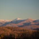 Craggy View by Forrest Tainio