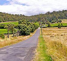 Road to Freycinet Vineyard by TonyCrehan