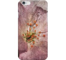 I Miss All Your Kisses Like The Spring iPhone Case/Skin