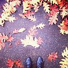 Leaves and Shoes by Eliza Sarobhasa