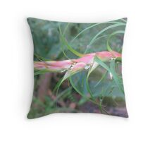The Raw Prawn Throw Pillow
