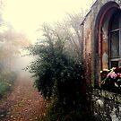Devotions in the misty wood. #2 by Turi Caggegi
