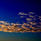 Relaxing in the sky. by Turi Caggegi