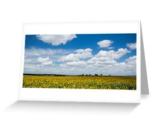 Stand and face the sun Greeting Card