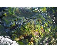 Waves of Green Photographic Print