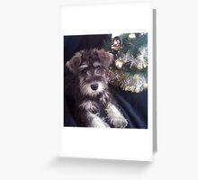 I'm Waiting For Santa  Greeting Card