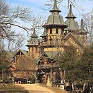 Castle Rogue's Manor of Arkansas by David  Hughes