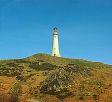 The Pepperpot by Jamie  Green