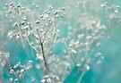 Bleu d'hiver by Anne Staub