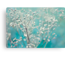 Bleu d'hiver Canvas Print