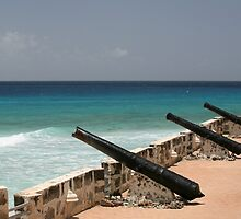 Cannon at Fort Charles by Tony Steel