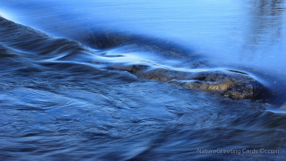 Catch The Wave, Winter Watercolor by NatureGreeting Cards ©ccwri