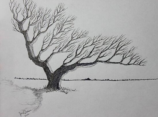 Tree of Wayward Winds by Jack G Brauer