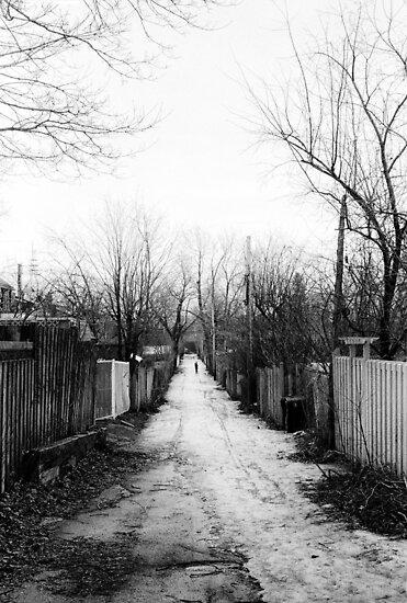 Melrose Lane by montserrat