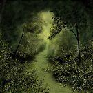 Forest Haven by Mitch Adams