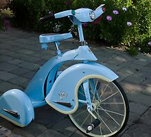 Blue Trike by Lee LaFontaine