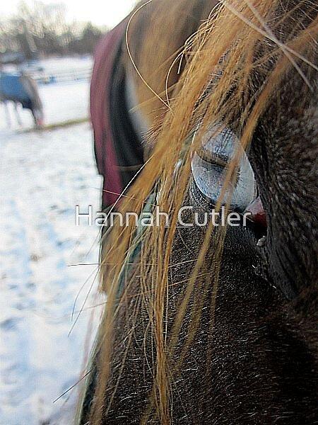 Blue Eyed Girl by Hannah Cutler