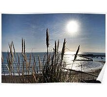 Winter Sun At Lyme  Poster