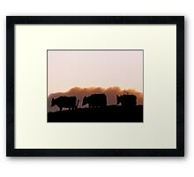 Sunrise Cows - Dairy Southland Framed Print