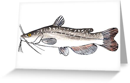 Brown Bullhead by fishfolkart
