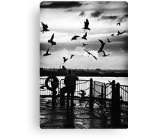 bird woman.. Canvas Print