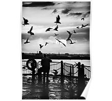 bird woman.. Poster