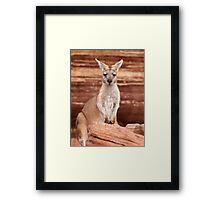 """Euro ~ """"Who's looking at who"""" Framed Print"""