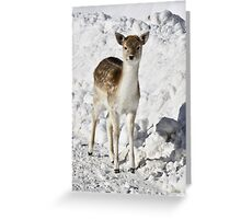 Chaste Greeting Card