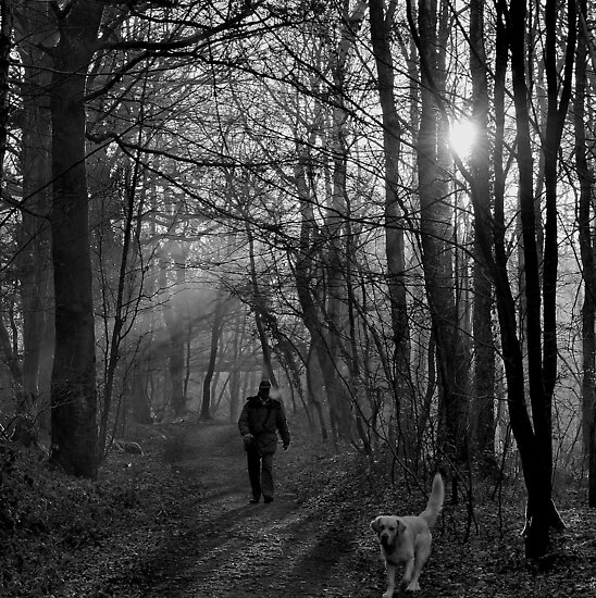 A Brisk Walk by relayer51