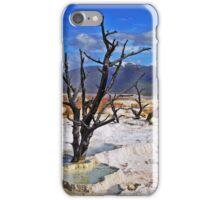 3 Trees iPhone Case/Skin