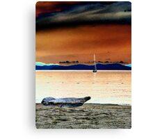 Sail boat. Canvas Print