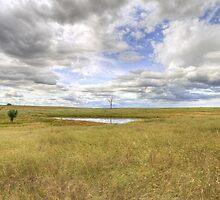 Rural New South Wales by Rod Kashubin