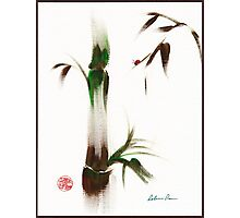 Little Lady - Zen bamboo ladybug painting Photographic Print