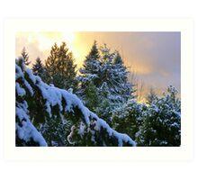 Frosty Alpenglow Art Print