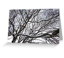 Lace Leaf Maple Greeting Card