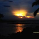 Waikoloa Sunset by PJS15204