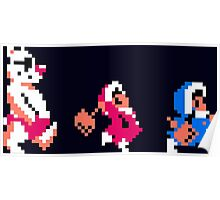 Ice Climber Complete Poster