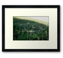Helicopters Framed Print