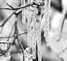 Icicles by Jim Stiles
