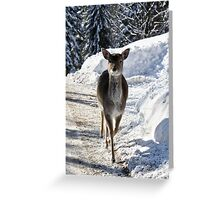 Running Down The Mountain Greeting Card