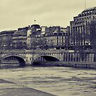 Paris Bridge in Winter by wendys-designs