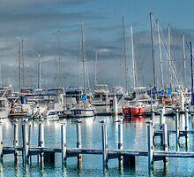 A Safe Harbour by Eve Parry