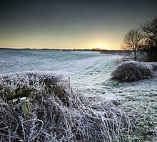 A Winter's Promise by Andy Freer