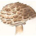 Mushroom by mansfi