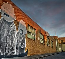 The twins are back in North Melbourne by mel365