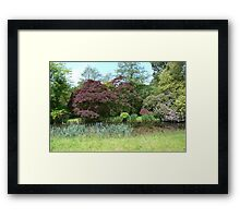 Picturesque pond and garden Framed Print