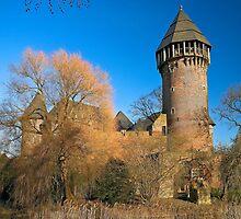 Linn Castle in Krefeld, NRW, Germany. by David A. L. Davies