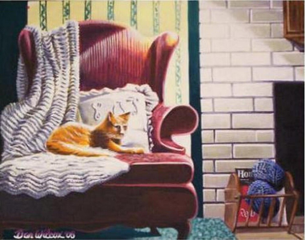 Cat sitting on chair by Dan Wilcox