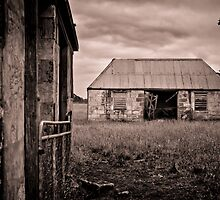 Rustic Beauty by Wesley Hellyer